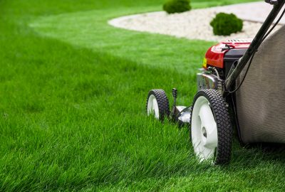 Special cleaning services (lawn etc.) | House Solutions