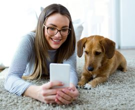 Pet-sitting   House Solutions