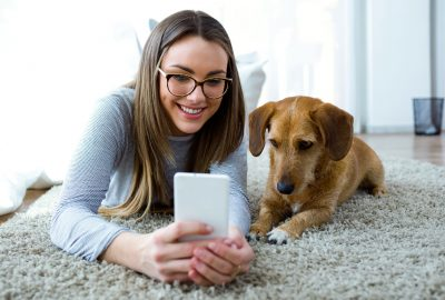 Pet-sitting | House Solutions